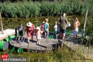 Waterbeestjes zoeken bij de Burcht te Wedde