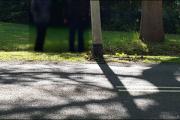 015_Bestuurster-botst-tegen-lantaarnpaal-13-05-19