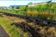 013_460-meter-droge-gras-afgebrand-Tweedeontsluitingsweg-23-07-19