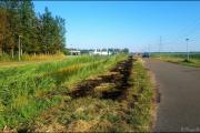 014_460-meter-droge-gras-afgebrand-Tweedeontsluitingsweg-23-07-19