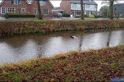 001_Auto-rolt-het-water-in-Drouwenerstraat-03-01-20