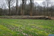 001_Stormschade-Boom-afgeknapt-de-Renne-09-02-20