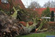 005_Stormschade-Boom-op-woning-JFH-Meijerstraat-09-02-20