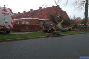 006_Stormschade-Boom-op-woning-JFH-Meijerstraat-09-02-20