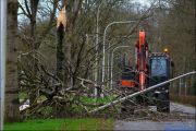 007_Stormschade-Boom-afgeknapt-Maarsbroek-09-02-20