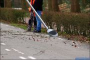 008_Stormschade-Boom-afgeknapt-Maarsbroek-09-02-20