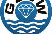 Logo-gzvw-diamand-transparant