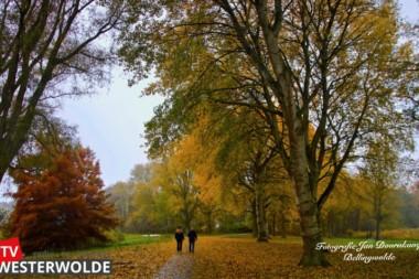 Stadspark Winschoten, zelfs mooi in de regen