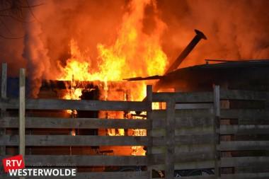 Metershoge vlammen bij brand schuurtje Oude Pekela (Foto-Update)