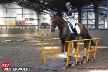 Bezoekers maken tijdens open dag bij de Driesporen kennis met diverse takken van paardensport