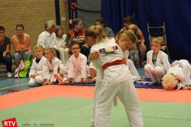Judowedstrijden OBS De Wiekslag