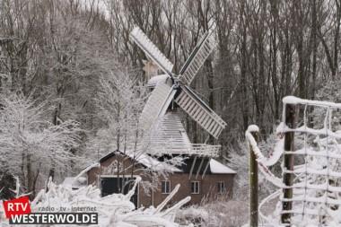 Sneeuwfoto's Wedderveer van Anneke Bots