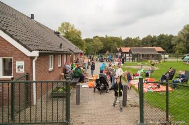 Gezellige rommelmarkt kinderboerdeij Winschoten